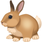 Rabbit on Facebook 4.0