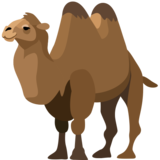 Two-Hump Camel on Facebook 2.0