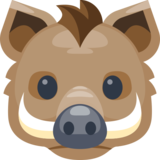 Boar on Facebook 2.0