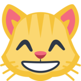 Grinning Cat with Smiling Eyes on Facebook 2.0