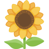 Sunflower on Facebook 2.0