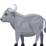 Water Buffalo on Facebook 2.0