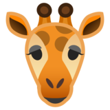 Giraffe on Google Android 8.0