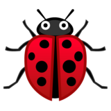 Lady Beetle on Google Android 8.0