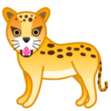 Leopard on Google Android 8.0