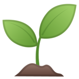 Seedling on Google Android 8.0