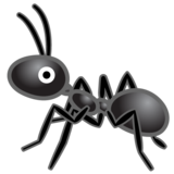 Ant on Google Android 8.1