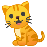 Cat on Google Android 8.1
