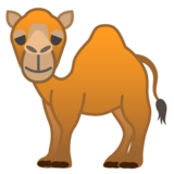 Camel on Google Android 8.1