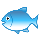 Fish on Google Android 8.1