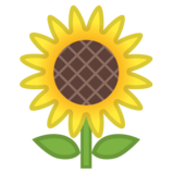 Sunflower on Google Android 8.1