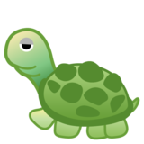 Turtle on Google Android 8.1