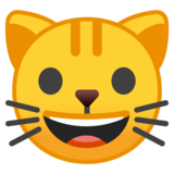 Cat Face on Google Android 9.0