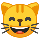Grinning Cat with Smiling Eyes on Google Android 9.0