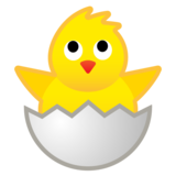 Hatching Chick on Google Android 9.0