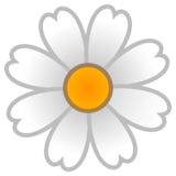 Blossom on Google Android 10.0