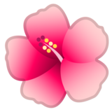 Hibiscus on Google Android 10.0