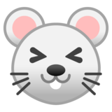 Mouse Face on Google Android 10.0
