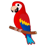 Parrot on Google Android 10.0