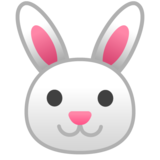 Rabbit Face on Google Android 10.0