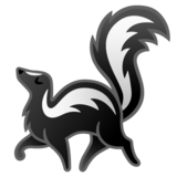 Skunk on Google Android 10.0
