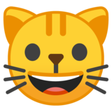 Grinning Cat Face on Google Android 10.0