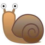 Snail on Google Android 10.0