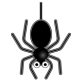 Spider on Google Android 10.0