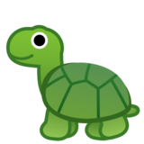 Turtle on Google Android 10.0