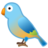 Bird on Google Android 10.0 March 2020 Feature Drop