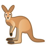 Kangaroo on Google Android 10.0 March 2020 Feature Drop