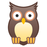 Owl on Google Android 10.0 March 2020 Feature Drop