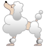 Poodle on Google Android 10.0 March 2020 Feature Drop
