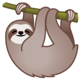 Sloth on Google Android 10.0 March 2020 Feature Drop