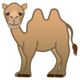 Two-Hump Camel on Google Android 10.0 March 2020 Feature Drop