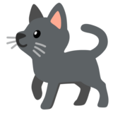 Black Cat on Google Android 11.0