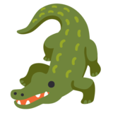 Crocodile on Google Android 11.0