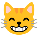 Grinning Cat with Smiling Eyes on Google Android 11.0