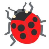 Lady Beetle on Google Android 11.0