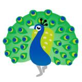 Peacock on Google Android 11.0