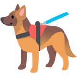 Service Dog on Google Android 11.0