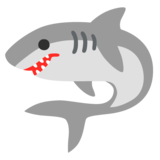 Shark on Google Android 11.0