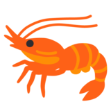 Shrimp on Google Android 11.0
