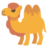 Two-Hump Camel on Google Android 11.0