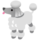 Poodle on Google Android 11.0 December 2020 Feature Drop