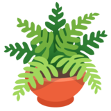 Potted Plant on Google Android 11.0 December 2020 Feature Drop