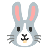 Rabbit Face on Google Android 11.0 December 2020 Feature Drop