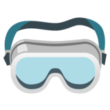 Goggles on Google Android 12.0
