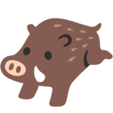 Boar on Google Android 7.0