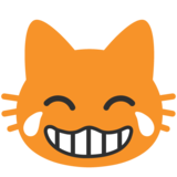 Cat Face With Tears of Joy on Google Android 7.0